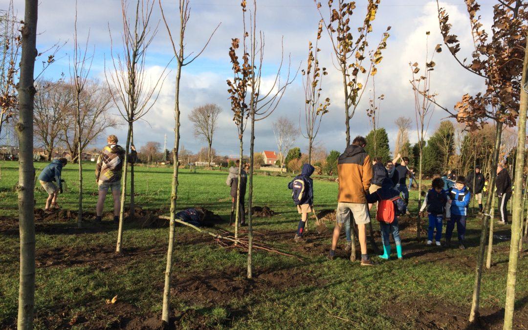 Schelle tekent voor 25.000 nieuwe bomen