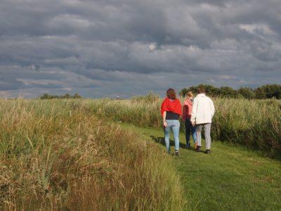 Wandelzoektocht langs de groene rand in en om Schelle