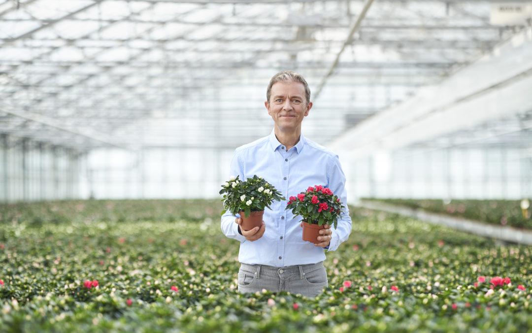 Verkoop mee plantjes voor Kom Op Tegen Kanker op 17-18 september